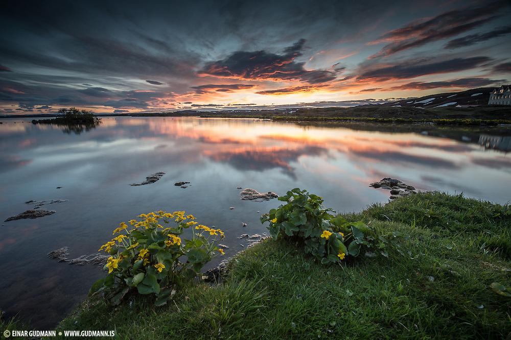 M˝vatn, taken in Northeast-Iceland