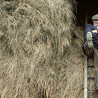 Ireland, Inaugh, County Clare, Farmer Mickey Cullinan clowns atop hayloft of family barn in farming village