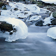Ice at the edge of Bear Lake, winter, Rocky Mountain NP, CO.
