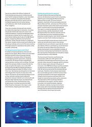 Australia's Last Great Whale Haven - IFAW 2012