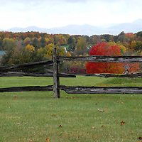 North America, USA, Vermont. Fall colors and fence in Vermont.