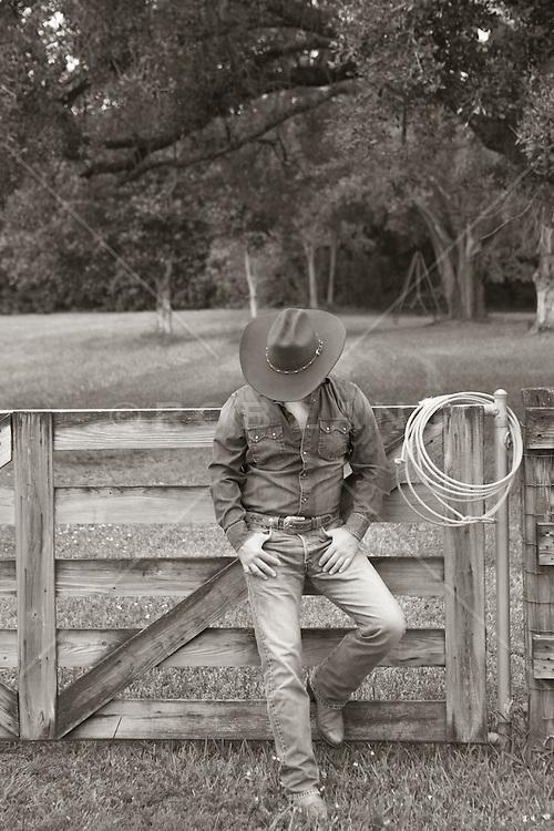 stardock fences alternative