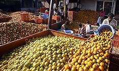 APR 5 2013 Wholesale Market in Bhopal