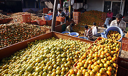 Fruit sellers arrange their oranges for sale at a wholesale market in Bhopal, India, April 5, 2013. Fruit flooded the market due to bumper crop in this season here, April 5, 2013. Photo by Imago / i-Images...UK ONLY.
