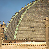 Pigeons line the dome of the old Fayette County Courthouse in Lexington, Ky., Thursday, December 3, 2015. (Photo by David Stephenson)