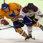 Ice Hockey League New Zealand