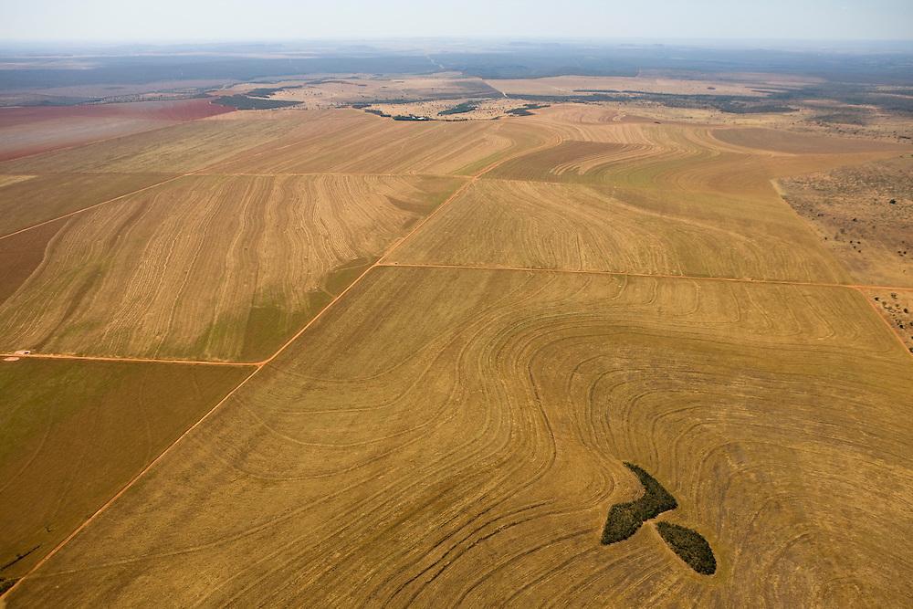 Farmland cleared from the Amazon Rainforest in Mato Grosso, Brazil, August 8, 2008. Daniel Beltra/Greenpeace