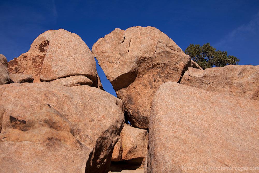 USA, California, Joshua Tree. Rocks of Joshua Tree on Hidden Valley Trail.