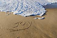 Joy, Main Beach, East Hampton, NY