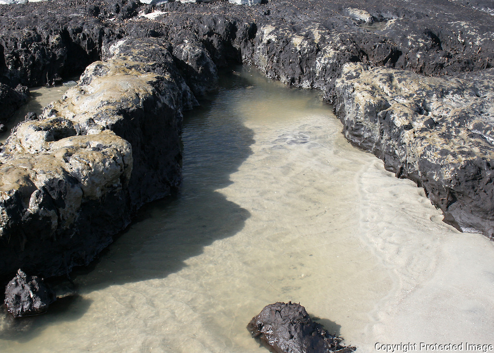 Rugged cliffs surrounding a shallow inlet on an unexplored continent or, a tidal pool on Jekyll Island