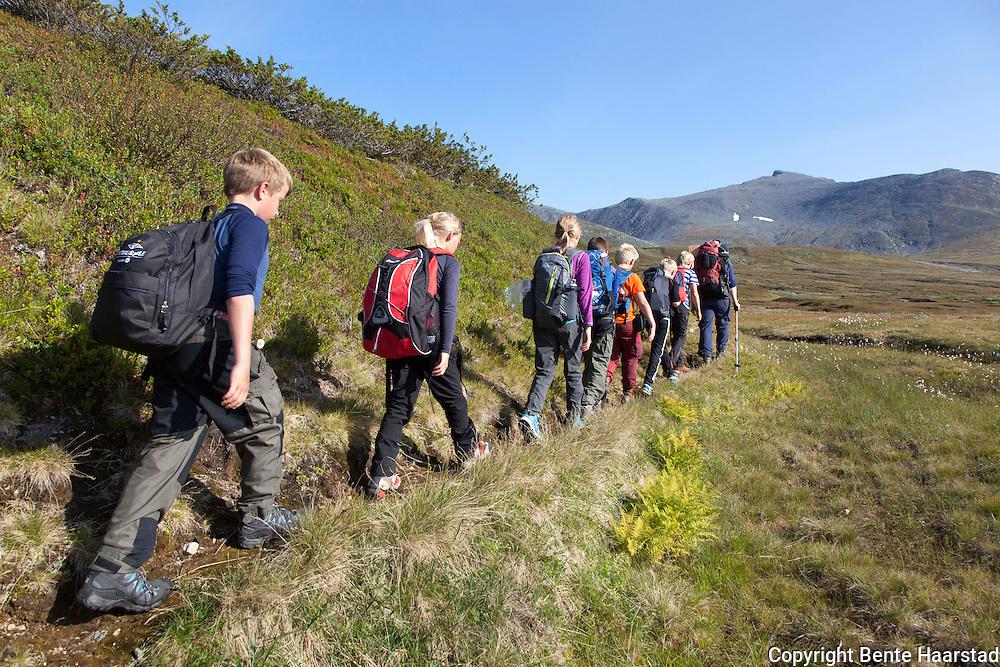 Elever fra Brekken oppvekst- og lokalsenter i Røros på veg inn til et fjellrevhi i Sylan, sammen med Marit Østby Nilsen og Solveig Græsli i Fjelldriv. I bakgrunnen Sylanmassivet med Storsola til venstre.
