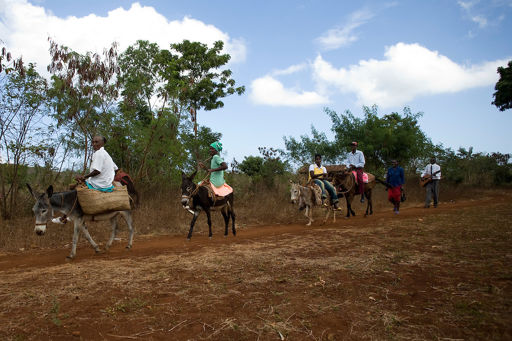 A group of Fonkoze microcredit clients arrive on mules and donkeys to their program graduation at the end of their 18 month Path to a Better Life program.