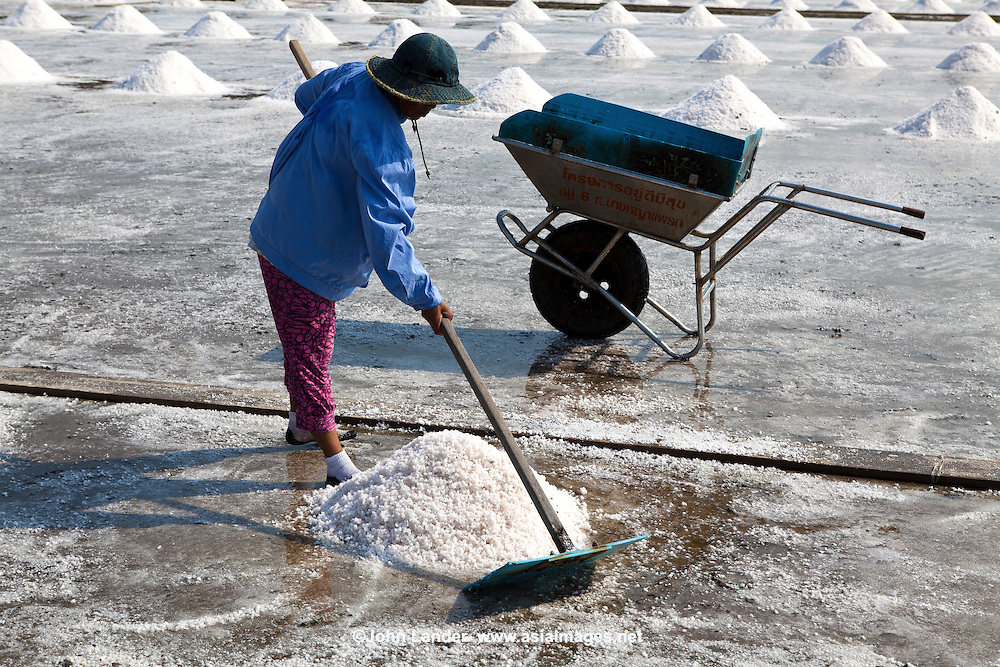 In Thailand, most of the salt used comes from brine salt farms, and the largest number of these brine salt farms are close to Bangkok in Samut Sakhorn. These large watery fields resemble rice paddis - except for the obvious absence of rice.  To make the salt, the fields are flooded with sea water pumped in from the nearby Gulf of Thailand, dammed, and left to dry naturally in the sun. When the water has evaporated, the salt is piled and taken away to be cleaned and bagged for sale.  Along Highway 35 there are plenty of vendors along the roadside selling huge bags of salt.  It takes about one month for the water to evaporate and create salt.