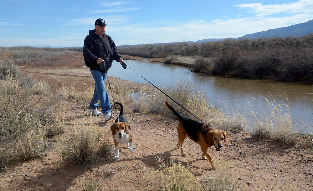 gbs030517b/GO -- Russ Johnson of Rio Rancho with his dogs, Sherman, left, and Tiger take a walk by the Rio Grande along the bosque trail where improvements to the trail are proposed for a 3/4 mile stretch near North Beach. (Greg Sorber/Albuquerque Journal)