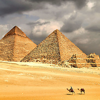 Great Pyramids and Camels at Giza, Egypt <br /> The pyramids of Giza near Cairo, Egypt, are a must see. Khufu is called The Great Pyramid because it is the largest. It is also the oldest and only remaining of the Seven Wonders of the World. On the left is the Pyramid of Khafre. The pharaoh ruled from 2558 to 2532 BC. In the middle is the 26th century BC. Pyramid of Menkaure. The three smaller structures are the Pyramids of the Queens. My research did not uncover the age of the two meandering camels going home after a long, hot day in the desert.
