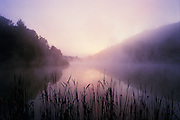 Sunrise over lake with reeds and mist