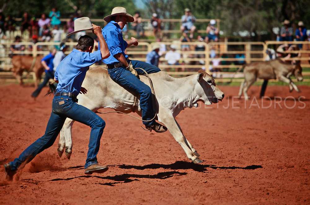 The annual Rodeo in Derby brings always a great crowd. <br /> There's many competitions as camp draft, gymkhana, bull dogging and roping. Riders need plenty of courage and strength to stay on for eight seconds during the bull ride. Derby, WA