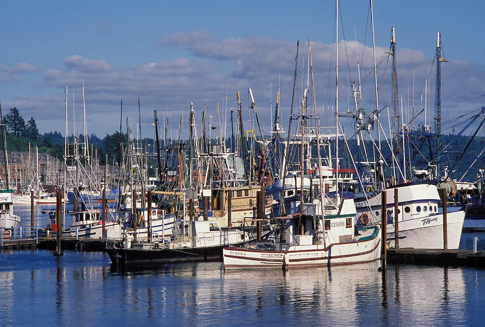 2313 0233 greg vaughn photography for Newport oregon fishing