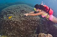 Guam Piti Diving