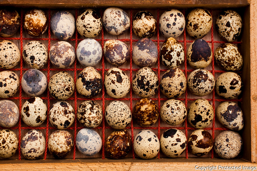 quail eggs for sale in a market in china
