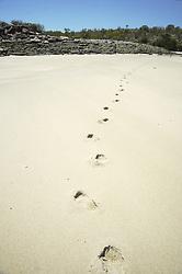 Footprints mark  a remote beach on the Kimberley coast.