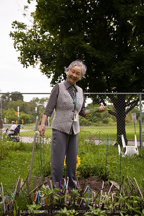 Community Gardener: A Chinese senior delights in growing familiar food in her community garden plot.