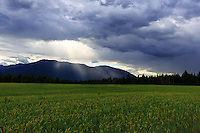 Farmland on a cloudy stormy afternoon in Northern Idaho<br /> <br /> &copy;2016, Sean Phillips<br /> http://www.RiverwoodPhotography.com