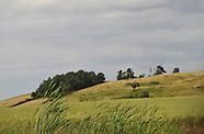 090607 AGRI