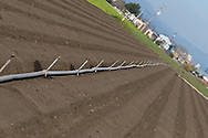 A row of irrigation piping stands ready to deliver water to a nicely manicured lettuce field.