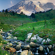 Mount Rainier 14,411¬?ft (4,392¬?m) from Edith Creek, Mount Rainier National Park Washington USA