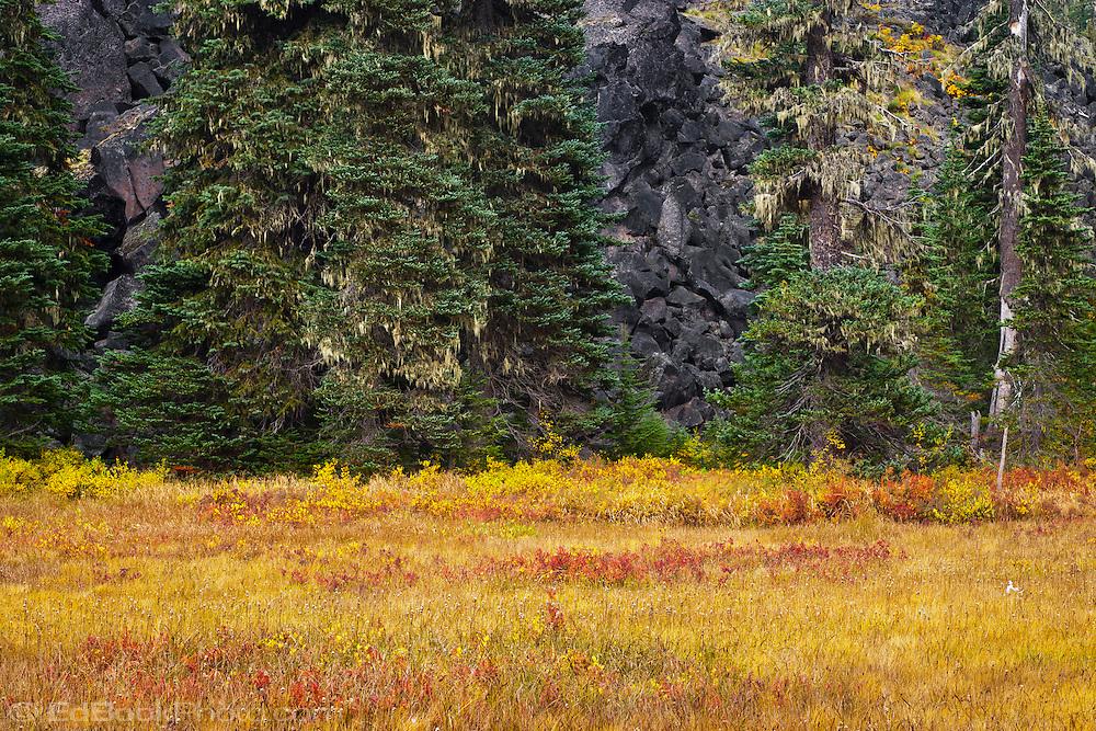 mountain meadow autumn above - photo #21