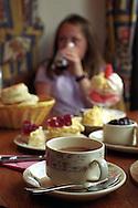 UK. Devon. Caroline Baker & her daughter Holly at Primrose Cottage tearooms, Lustleigh, Devon..Photo©Steve Forrest/Insight-Visual.