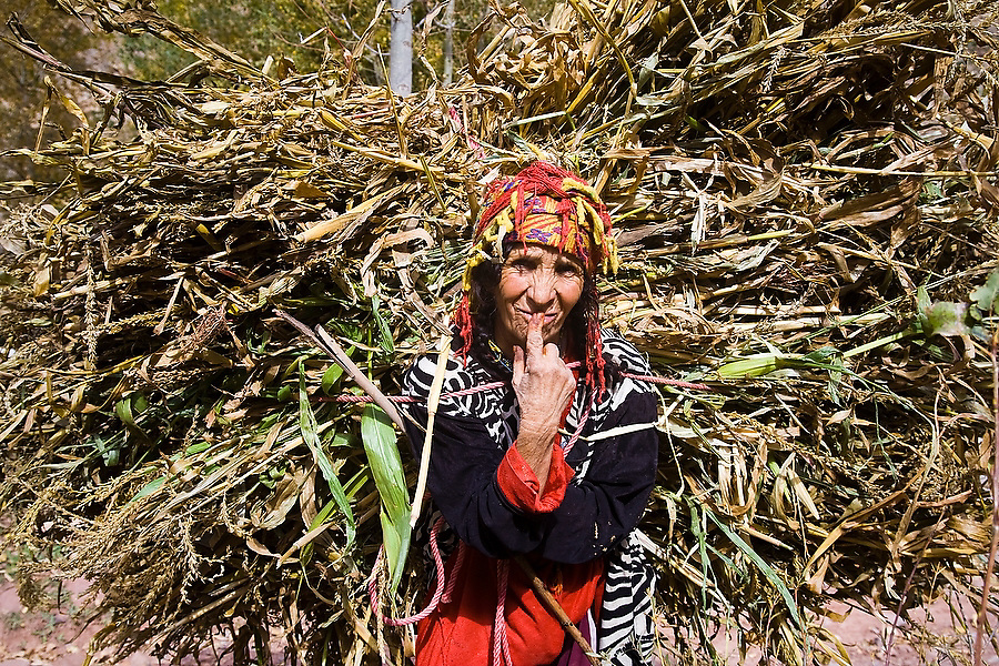 A Berber woman carries home dried wheat and corn stalks from the fields to feed the animals at her farm in Ichbbakene, M'Goun Massif, Central High Atlas, Morocco on November 6, 2007.