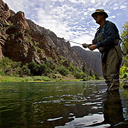 Gaylen Wallace of Palisade fly fishes near the East Portal just outside the boundaries of the Black Canyon of the Gunnison National Park. Wallace, a peach farmer, had just finished up harvesting for the year and said it was the first time he's fished this stretch of the Gunnison River. The park's unique and spectacular landscape was formed slowly over thousands of years by the action of water and rock scouring down through the  rock walls of the canyon. No other canyon in North America combines the narrow opening, sheer walls, and startling depths offered by the Black Canyon of the Gunnison. The same water that formed the canyon is also necessary for its future. The plants and animals in the canyon rely on a steady flow year round as well as occasional peak flows to maintain the ecosystem in the canyon. The Bureau of Reclamation has a number of dams upstream and Gale Norton, The Secretary of the Interior, worked out a deal with everyone involved but environmentalists disagreed with it and the issue is tied up in the courts. Black Canyon of the Gunnison National Park is a United States National Park located in western Colorado, and managed by the National Park Service. The park contains 12 miles of the 48 mile long canyon of the Gunnison river. The national park itself contains the deepest and most dramatic section of the canyon, but the canyon continues upstream into the Curecanti National Recreation Area and downstream into the Gunnison Gorge National Conservation Area. The Gunnison River drops an average of 43 feet per mile (8 m/km) through the entire canyon, making it one of the steepest mountain descents in North America. The Black Canyon is so named on account of its steepness which makes it difficult for sunlight to penetrate very far down the canyon. As a result, the canyon walls are most often in shadow, causing the rocky walls to appear black. At its narrowest point the canyon is only 40 feet (12 meters) across at the river. The extreme steepness and depth