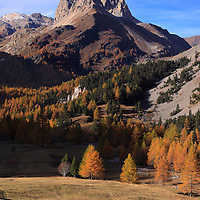 An autumnal view of the top of the Valle Stretta, a beatiful small valley in the Western Alps right at the border between France and Italy, dominated by the jagged peak of the Grand Seru. Apart the gorgeous alpine setting here, I really loved the contrast produced by the evergreens and the muted colours of the larches.