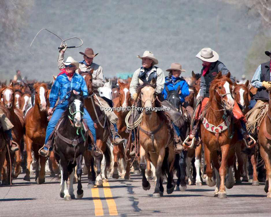 Sombrero Ranches Great American Horse Drive