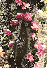 La Guadalupana and Pelegrinaciones 1993-1999