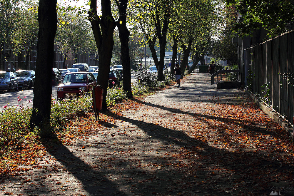 Despite falling leaves, it was about 25 degrees in the Netherlands in early October 2011 - this is taken just near Koog-Zaandijk station, near the windmills at Zaanse Schans, north of Amsterdam