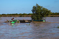 The Tonle Sap is both a lake and river system of huge importance to Cambodia. The area is home to many ethnic Vietnamese communities living in floating villages around the lake. The Tonle Sap is the largest freshwater lake in Southeast Asia and is an ecological hotspot that was designated as a UNESCO biosphere in 1997. The Tonle Sap is a branch of the mighty Mekong River.