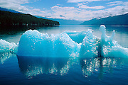 Glacier Ice, Iceberg, Endicott Arm, Alaska, USA