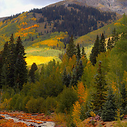 Fall colors along the Ucomphagre River near the ghost town of Ironton in the San Juan Mountains of Colorado.