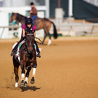 Close Hatches in preparation for the Kentucky Oaks at Churchill Downs in Louisville, KY on May 01, 2013. (Alex Evers/ Eclipse Sportswire)