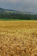 070612 AGRI DIVERS