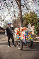 """Alberto Reyes Ambrocio, Mobile Food Seller, Calistoga.  """"I started this business four years ago...my biggest seller is the icecream sandwich."""""""