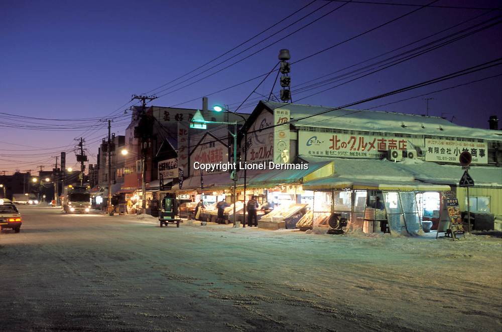 Sapporo fish market at 6am on a January morning.