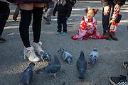 Little girl in kimono at Shinto shrine on Japan