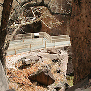 The Catwalk, a National Recreation trail along the canyon of Whitewater Creek, is a unique feature of southwestern New Mexico. Located five miles east of Glenwood (take Hwy. 180 to 174), it presents an always vibrant journey along a path reflecting the region's mining history. The canyon was used as a hideout by both Geronimo and Butch Cassidy.