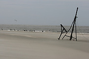 A shipwreck buried in the sand of a remote part of Jekyll Island beach with pelicans.