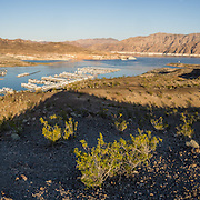 Houseboats line docks at Callville Bay Resort & Marina, Lake Mead National Recreation Area, Nevada, USA. Formation of Lake Mead began in 1935, less than a year before Hoover Dam was completed along the Colorado River. The area surrounding Lake Mead was established as the Boulder Dam Recreation Area in 1936. In 1964, the area was expanded and became the first National Recreation Area established by US Congress. Three desert ecosystems meet in Lake Mead NRA: Mojave Desert, Great Basin Desert, and Sonoran Desert. The panorama was stitched from 9 overlapping photos.