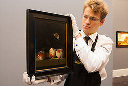 Sotheby's London, November 28th 2014.Sotheby's hold a preview for their December 3rd sale of Old Master and British Paintings at their Bond Street gallery. The exhibition runs from November 29th to December 3rd. PICTURED: A Sotheby's gallery technician prepatres to hang Adriaen Coorte's Three Peaches on a Stone Ledge With a Red Admiral Butterfly, considered to be one of the artist's finest works, expected to fetch between £2-3million at auction.